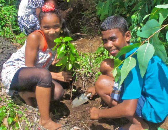 20150726-students-planting-in-eli-forest
