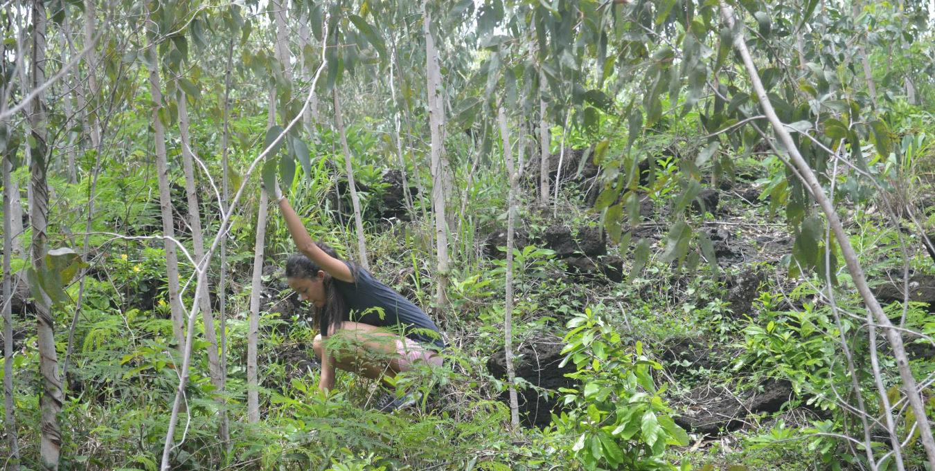 20150617-courtney-planting-in-eli-forest